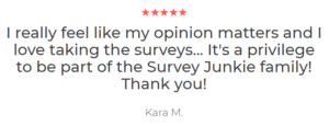 Survey junkie customer review 3
