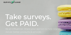 Survey Junkie Amazon Gift card