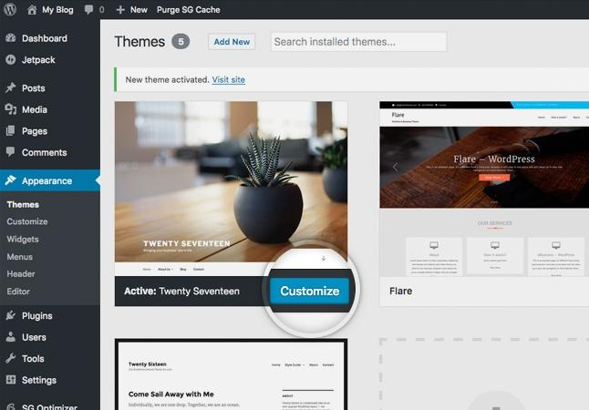 Customization of WordPress website